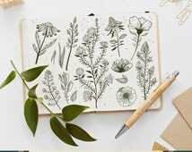 Wildflower Clip Art Set, Flower Illustration Clipart, Hand Drawn Doodle Flowers Wildflowers Clipart, Wildflower Set 1
