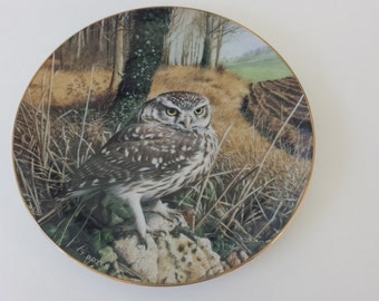 Vintage Owl Plate, Watchful Eyes, The Majesty Of Owls 1992