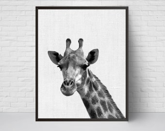 Giraffe Print, Nursery Animal Art, Nursery Safari Decor, Printable Kids Room Poster, Modern Minimalist, Instant Download, Giraffe Photo