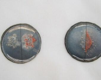 Petri Dish Magnets
