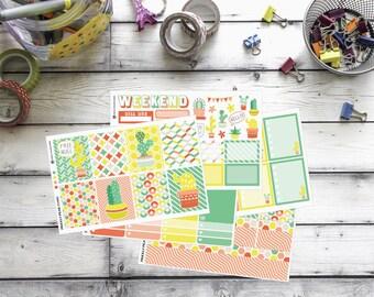 Cactus Planner Kit, for Erin Condren Planner, vertical sticker kit, full boxes, sampler, checklists, Hello Cactus Weekly Sticker Kit