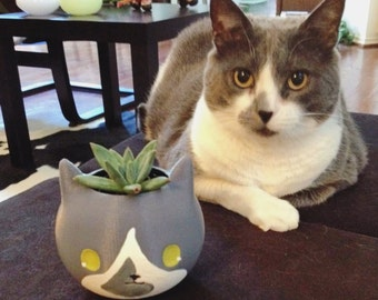 Customize Cat Planter, Pet, hand painted, Father's Day Gift, 3D printed, Cute, Adorable Gift, Cat lover Gift, Kitty Planter, animal planter