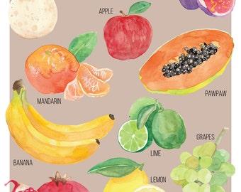 Food Illustration Australian Autumn Fruit Guide Watercolour Illustration Print