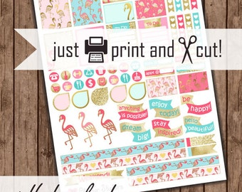 Pink Flamingo Planner Stickers, Gold, Blue, and Pink Tropical: Planner Stickers Download