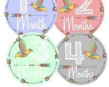 Monthly Baby Stickers Baby Month Stickers Boy or Girl Month Stickers Bodysuit Milestone Stickers  Month by Month