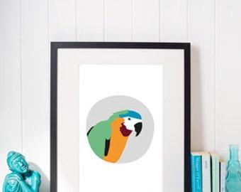 Parrot illustrated artwork