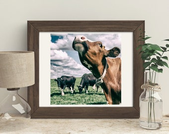 Color Photography, Farmhouse Home Decor, Cows Grazing, Brown and Black, Country Style for your home,