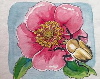 Hattie the June Beetle