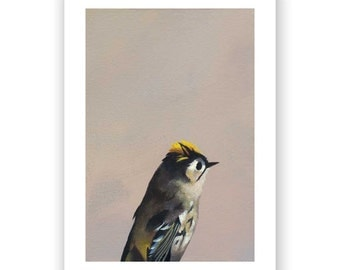 The Cloaca Chronicles 5 x 7 Art Print - Bird - Animal - Nature - Gift - Giclee