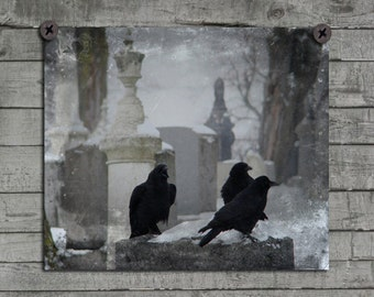 Gothic Birds, Rooks, Ravens, Blackbirds, Winter, Tombstones, Graveyard Nature Wall Decor, Cawing Crow, Aged Design -  Winter Gothic Crows