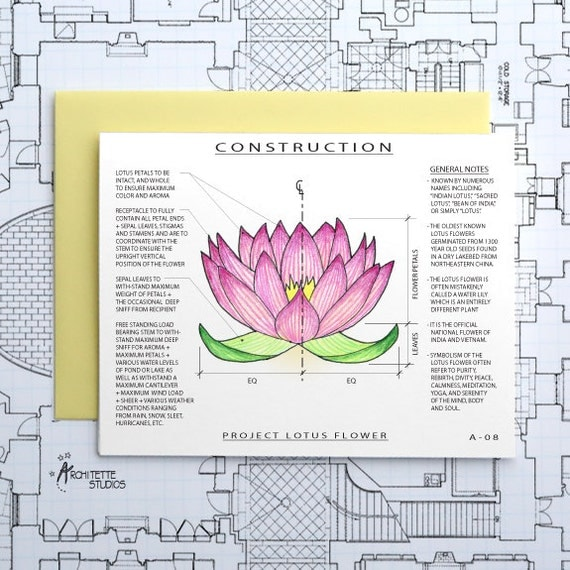 Project Lotus Flower - Blank Architecture Construction Card