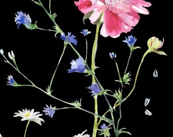 Botanical on Black #4 Giclee print by Gretchen Kelly