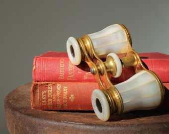 Antique Lemaire Paris Mother-of-Pearl Opera Glasses, French Collectibles, Jumelles, Photo Props, French Opera Glasses