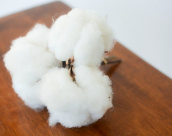 New! Cottons bolls, bunch of cotton bolls, dried cotton, cotton, cotton balls