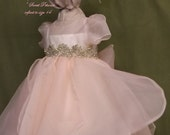 Sweet Petunia by Angela West. Birthday, flower girl, special occasion dress. sizes 7-14 with hair bow