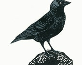 Jackdaw two-colour linocut print