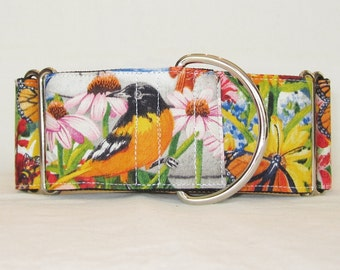 Garden Delight Martingale Dog Collar - 1.5 or 2 Inch - colorful flowers birds butterfly summer spring blooms
