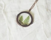 round glass specimen locket necklace - ferns