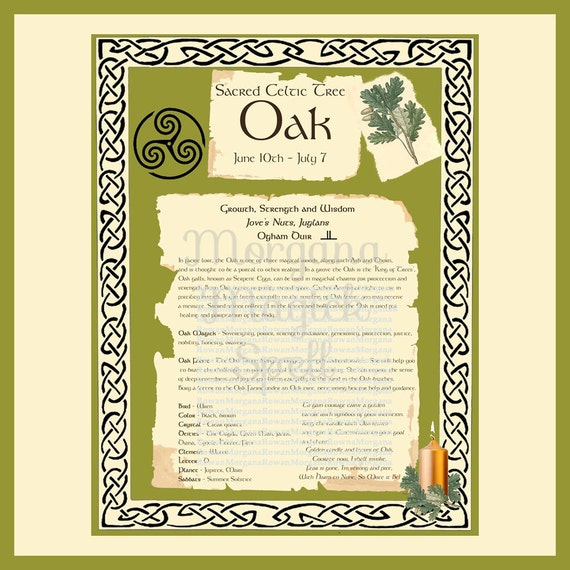 OAK CELTIC SACRED Tree -  Digital Download, Book of Shadows Page,Grimoire, Spells, White Magick, Wicca, Witchcraft, Herb Magic