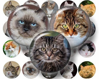 "Cats, Digital Collage Sheet, 2 Inch, 1.5"", 1.25"",  Circles, Bottle Cap Images, Kittens, Printable, Download, Cabochon, Pendants, Magnets"