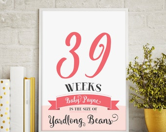 Whimsical weekly pregnancy signs, pregnancy weeks, pregnancy countdown, baby weeks, pregnancy prop, pregnancy sign