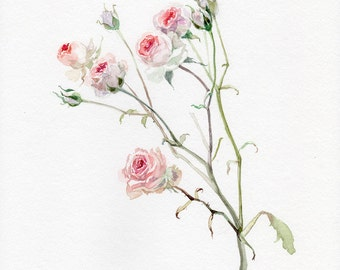 Roses print, GICLEE Print, mini roses, flower watercolor, garden-lovers gift