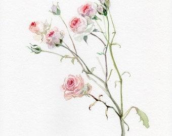 Roses ORIGINAL PAINTING, watercolor mini roses, flower watercolor, garden-lovers gift
