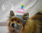 Pet Birthday Cake Beanie (XS-XL) Any Colors