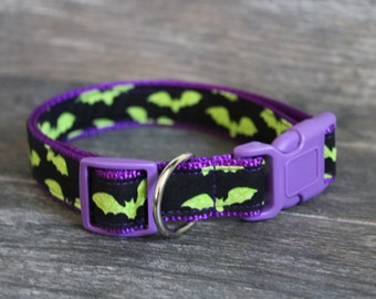 Green and Purple Bats Halloween Dog Collar - Add a name