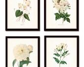 White Botanical Print Set No. 2 - Giclee - Canvas Art Prints - Antique Botanical Prints - Wall Art - Prints - Posters - Redoute Flowers