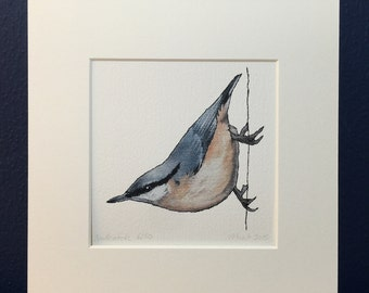 Nuthatch Print - Mounted