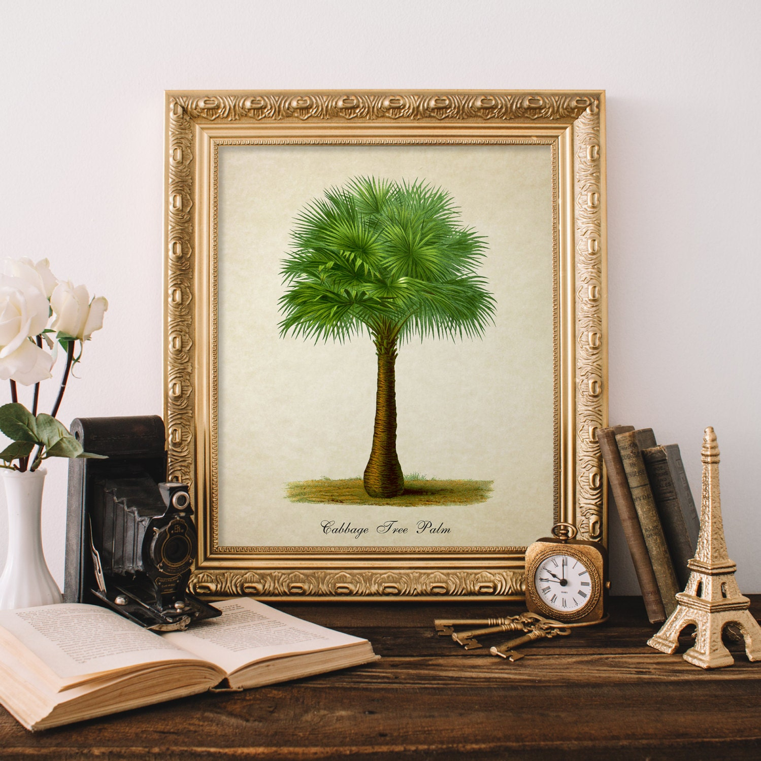 Https Www Etsy Com Listing 448655594 Palm Botanical Print Cabbage Tree Palm