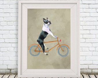 Boston Terrier on bicycle Print by Coco de Paris