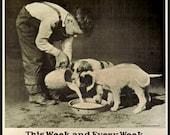 Art Print Animal Welfare Old Dog Poster 1930s, Print 8 x 10