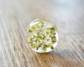 resin plugs real flowers Gauges Plugs dried flower plug white floral Plug 4g 2g 0g 00g 1/2 9/16 5/8 11/16 13/16 13/16 7/8 15/16 1 in 2 inch