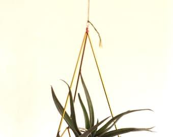 Himmeli drop, mobile himmeli drop, air plant holder, airplant holder, brass decoration, hanging plants decoration, brass himmeli diy set