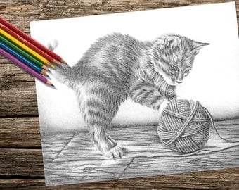 coloring for adults printable coloring page adult coloring page instant download coloring kitten and yarn cat coloring book for adult - Coloring Book Yarns