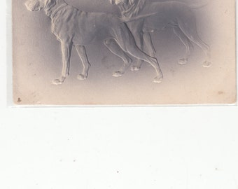 Tuck Antique Postcard Embossed Variegated Gray Setters/Retrievers Dogs 1910 Airbrush