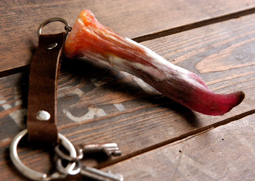 Key holder resin antler piece iii - Antler key rack ...