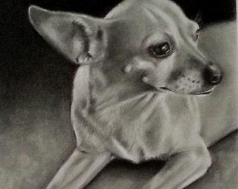 8x10 Custom Pet Portrait Drawing From Photo, Graphite Pencil Portrait, Pet Memorial Art, Custom Artwork of Pet,