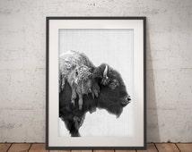 Buffalo Print, Bison Wall Art, Black and White Buffalo, Modern Minimal, Animal Photography, Printable Art, Instant Download, large poster