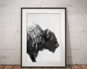 Buffalo Print, Bison Wall Art, Black and White Buffalo, Modern Minimal, Animal Photography, Printable Art, Instant Download, large poster