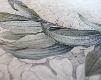 Japanese Washi Ketubah Print by Jennifer Raichman - Green Laurel