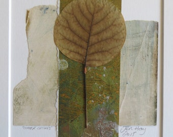 Copper Cotinus