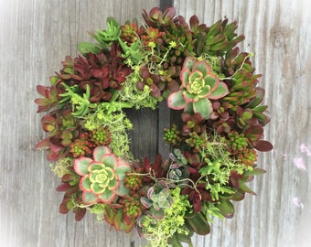 "Special Red Colors - 11"" Succulent Wreath"