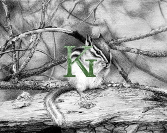 "KG Cards ""Chipmunk"" Greeting Card"