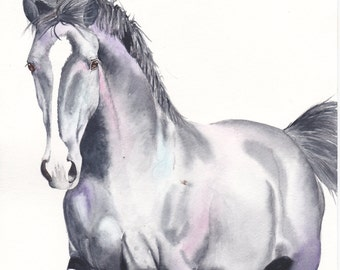 ON SALE ** Beautiful Equine horse trotting movement based print  from an original watercolour painting  sketch individually signed