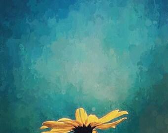 Yellow Flower Photograph Teal Blue