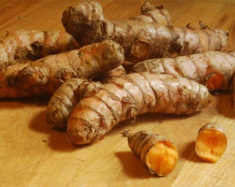 15 to16 Healthy Turmeric Roots ,Whole,Raw ,Organic 6oz. Juice it,brew it or plant it