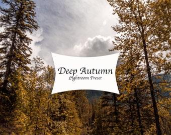 Lightroom presets, autumn presets, nature presets, landscape presets,
